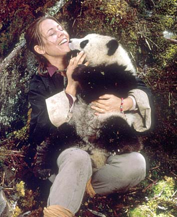 ruth harkness the lady and the panda Just before christmas a juvenile was published, telling the story of the baby panda in the chicago zoo now comes the true story of the capture of the panda, by a woman wholly untrained in scientific methods, inexperienced in expeditions of any sort.