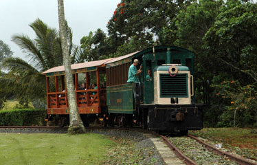 Few Had The Opportunity To Ride The Trains    Originally Used To Transport  Sugar Cane    Before The Creation Of The Kauai Plantation Railway.